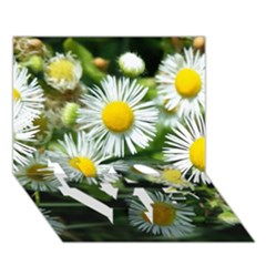 White Summer Flowers Oil Painting Art Love Bottom 3d Greeting Card (7x5) by picsaspassion