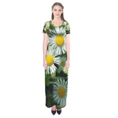 White summer flowers oil painting art Short Sleeve Maxi Dress by picsaspassion