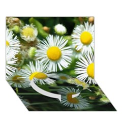 White Summer Flowers Oil Painting Art Circle Bottom 3d Greeting Card (7x5)