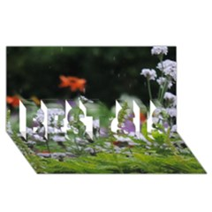 Wild Flowers Best Sis 3d Greeting Card (8x4) by picsaspassion