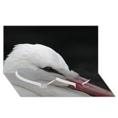 Wild Stork Bird, Close Up Twin Heart Bottom 3d Greeting Card (8x4) by picsaspassion