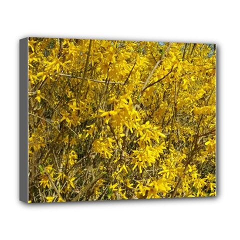 Nature, Yellow Orange Tree Photography Deluxe Canvas 20  X 16   by yoursparklingshop