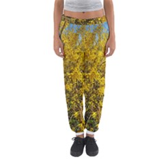 Nature, Yellow Orange Tree Photography Women s Jogger Sweatpants by yoursparklingshop