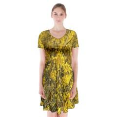 Nature, Yellow Orange Tree Photography Short Sleeve V Neck Flare Dress by yoursparklingshop