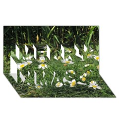 Wild Daisy Summer Flowers Merry Xmas 3d Greeting Card (8x4) by picsaspassion