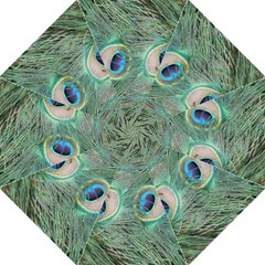 Peacock Feathers Macro Golf Umbrellas by GiftsbyNature