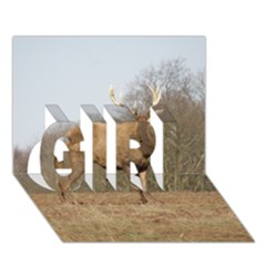 Red Deer Stag On A Hill Girl 3d Greeting Card (7x5) by GiftsbyNature