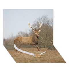 Red Deer Stag On A Hill Heart Bottom 3d Greeting Card (7x5) by GiftsbyNature