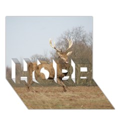 Red Deer Stag On A Hill Hope 3d Greeting Card (7x5) by GiftsbyNature