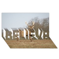 Red Deer Stag On A Hill Believe 3d Greeting Card (8x4) by GiftsbyNature
