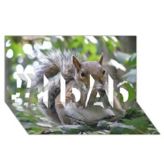 Gray Squirrel Eating Sycamore Seed #1 Dad 3d Greeting Card (8x4)