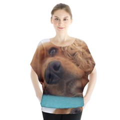 Red English Cocker Spaniel 2 Blouse by TailWags