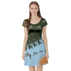 Sun Ray Swirl Design Short Sleeve Skater Dress