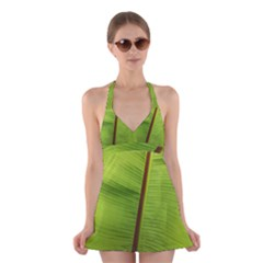 Ensete leaf Halter Swimsuit Dress by picsaspassion