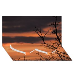 Tree Branches And Sunset Twin Heart Bottom 3d Greeting Card (8x4) by picsaspassion