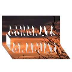 Tree branches and sunset Congrats Graduate 3D Greeting Card (8x4) by picsaspassion