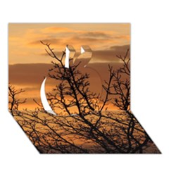 Colorful Sunset Apple 3d Greeting Card (7x5) by picsaspassion