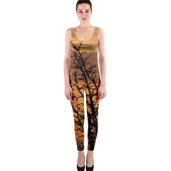 Colorful Sunset Onepiece Catsuit by picsaspassion