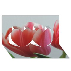 Red   White Tulip Flower Twin Hearts 3d Greeting Card (8x4)