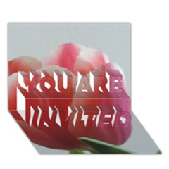 Red   White Tulip Flower You Are Invited 3d Greeting Card (7x5)