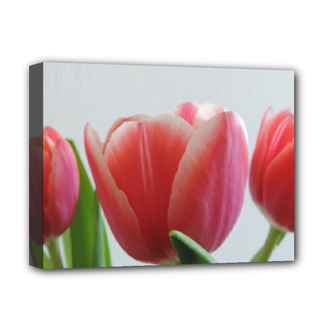 Red Tulips Deluxe Canvas 16  X 12   by picsaspassion