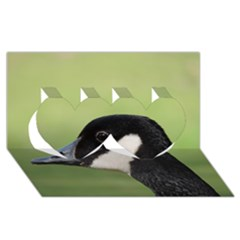 Goose Bird In Nature Twin Hearts 3d Greeting Card (8x4) by picsaspassion