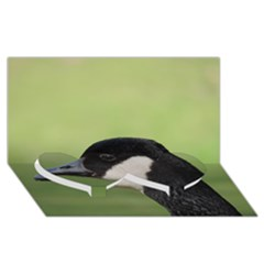 Goose Bird In Nature Twin Heart Bottom 3d Greeting Card (8x4)