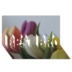 Colored By Tulips Best Bro 3d Greeting Card (8x4) by picsaspassion