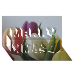 Colored By Tulips Merry Xmas 3d Greeting Card (8x4)