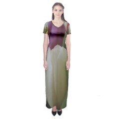Colored by Tulips Short Sleeve Maxi Dress by picsaspassion