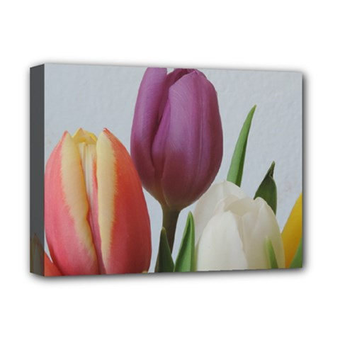 Tulip Spring Flowers Deluxe Canvas 16  X 12   by picsaspassion