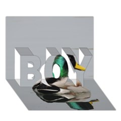 Swimming Duck Boy 3d Greeting Card (7x5)