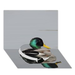 Swimming Duck Circle Bottom 3d Greeting Card (7x5) by picsaspassion