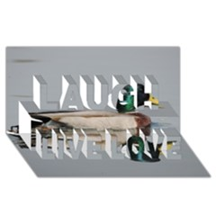 Wild Duck Swimming In Lake Laugh Live Love 3d Greeting Card (8x4) by picsaspassion