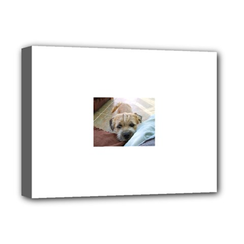Border Terrier Begging Deluxe Canvas 16  x 12   by TailWags