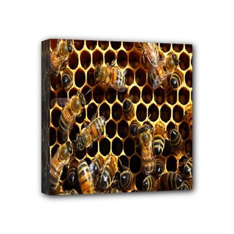 Bees On A Comb Mini Canvas 4  X 4  by AnjaniArt