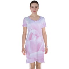 Pink Rose Short Sleeve Nightdress by Aanygraphic