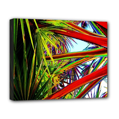 Kostenloses Leaves Deluxe Canvas 20  X 16   by AnjaniArt