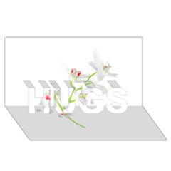Isolated Orquideas Blossom Hugs 3d Greeting Card (8x4) by dflcprints