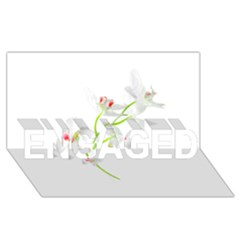 Isolated Orquideas Blossom Engaged 3d Greeting Card (8x4)