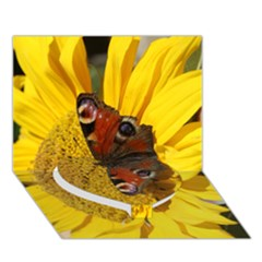 Yellow Butterfly Insect Closeup Heart Bottom 3D Greeting Card (7x5) by Zeze