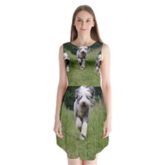 Bearded Collie In Motion Sleeveless Chiffon Dress   by TailWags