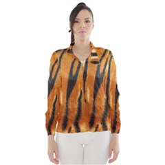Tiger Wind Breaker (women) by AnjaniArt