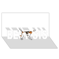 Treeing Walker Coonhound Silo Color BEST SIS 3D Greeting Card (8x4) by TailWags