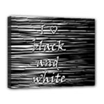 I love black and white Canvas 14  x 11
