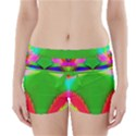 Colorful Abstract Butterfly With Flower  Boyleg Bikini Wrap Bottoms View1