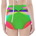 Colorful Abstract Butterfly With Flower  High-Waisted Bikini Bottoms View2