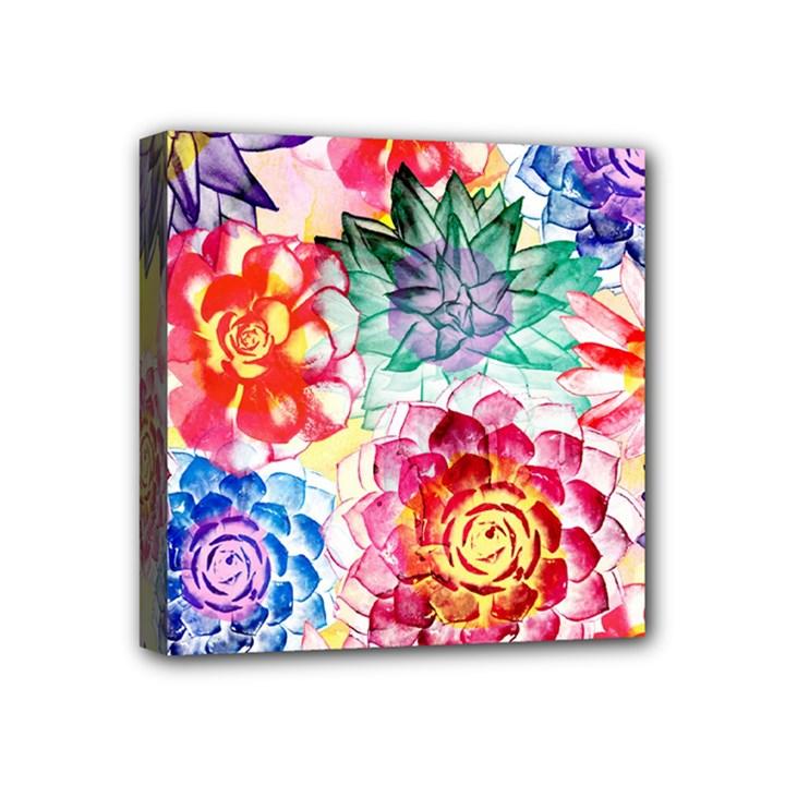 Colorful Succulents Mini Canvas 4  x 4