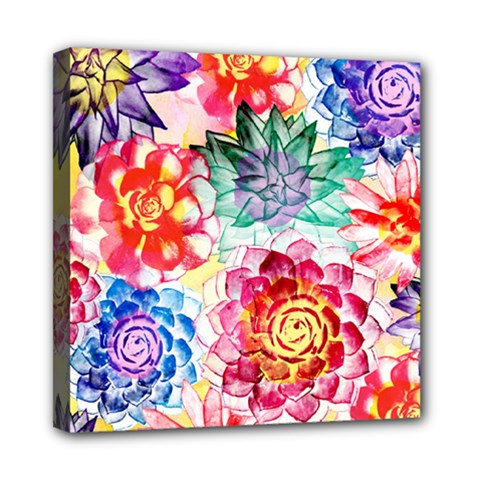 Colorful Succulents Mini Canvas 8  X 8  by DanaeStudio