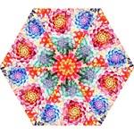 Colorful Succulents Mini Folding Umbrellas